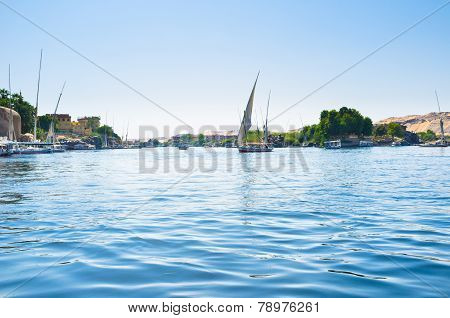 The Sailing Felucca