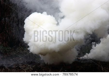 smoke from smoke bombs