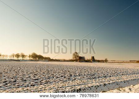 Dutch Agricultural Landscape In Wintertime
