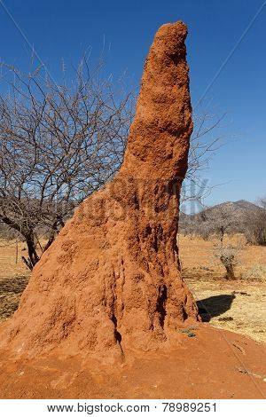 Huge Red Termite Mound In Africa