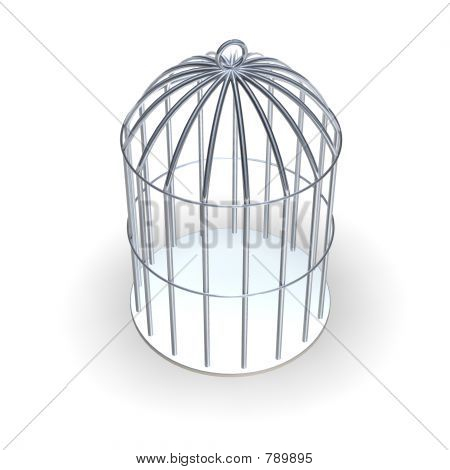 3d Cage