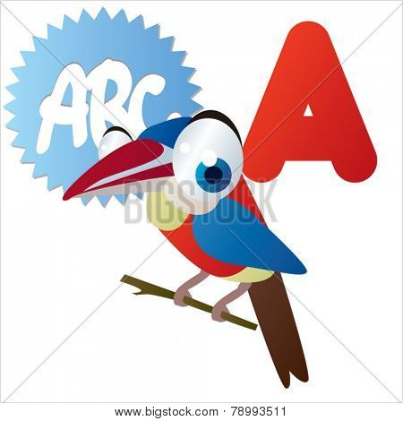 A is for vector cute cartoon isolated Arasari bird