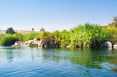 stock photo of mausoleum  - The green bank of the Elephantine Island with the Mausoleum of Aga Khan on the background Aswan Egypt - JPG