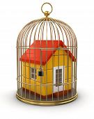 image of caged  - Gold Cage with House - JPG