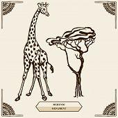 picture of mehendi  - Tall giraffe and tree - JPG