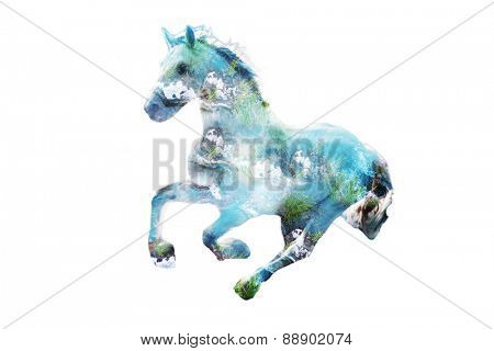 horse in gallop, composite image with blue water and grass