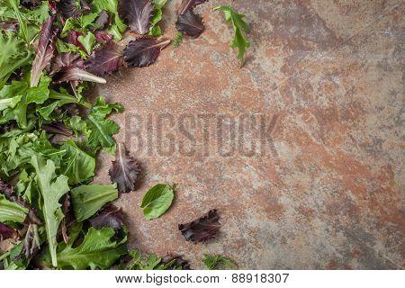 Fresh Lettuce Leaves On Textured Background