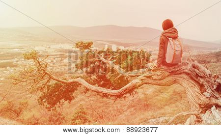Traveler Woman Sitting On A Tree Outdoor