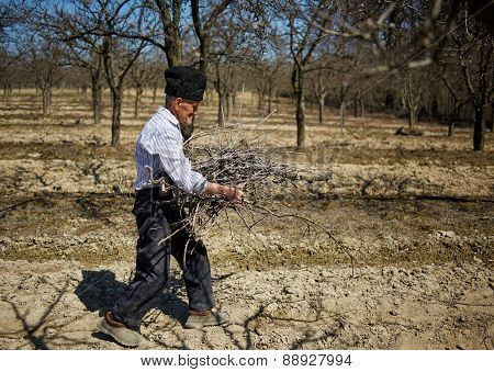 Senior Farmer Spring Cleaning The Orchard