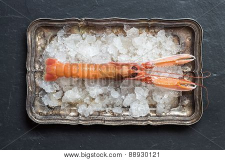 Raw Langoustine On Ice