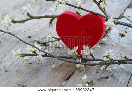 Red Heart  With Flower Branch,  Love Symbol For Valentine's Day Or Mothers Day