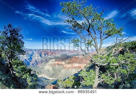 Landscapes At Grand Canyon Arizona