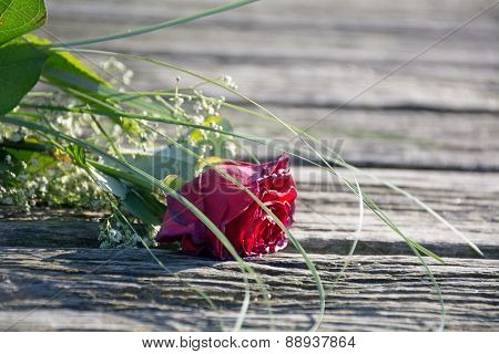 Thrown Away Love, Rose Bouquet Forgotten On Old Wood