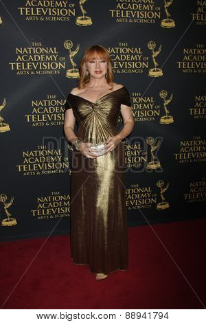 LOS ANGELES - FEB 24:  Andrea Evans at the Daytime Emmy Creative Arts Awards 2015 at the Universal Hilton Hotel on April 24, 2015 in Los Angeles, CA