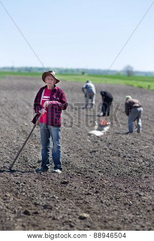 Peasants Sowing On Farmland