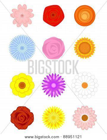 Floral Shapes Set