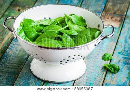 Raw Fresh Spinach In A White Colander