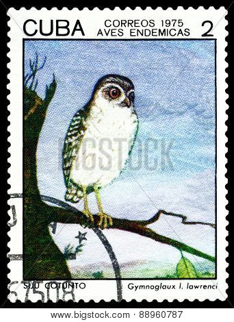 Vintage  Postage Stamp.  Bird Gymnoglaux Lawrenci.