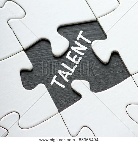 Talent Puzzle