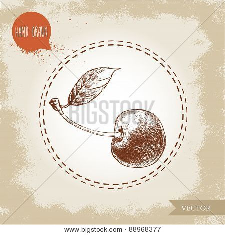 Hand drawn cherry isolated on vintage background.Retro sketch style vector eco food illustration