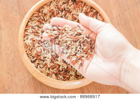 Multi Whole Grain Of Jasmine Rice On Hand