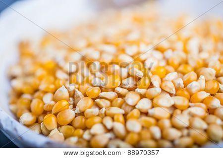Dry Grain Corn In A White Bowl