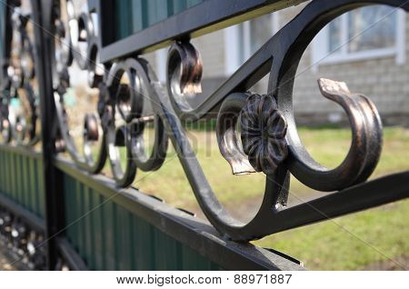 Iron Fence Flower Detail