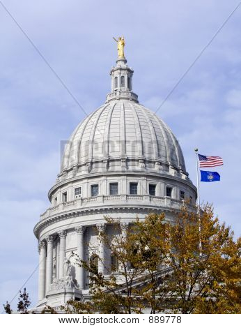 Capitol Dome And Flags