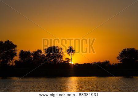 sunrise in a tropical landscape
