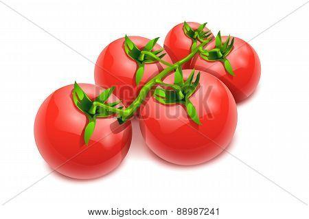 tomatos 17