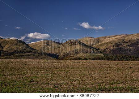 Vibrant hilly landscape