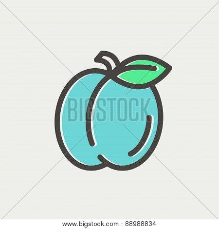 Plum with leaf thin line icon