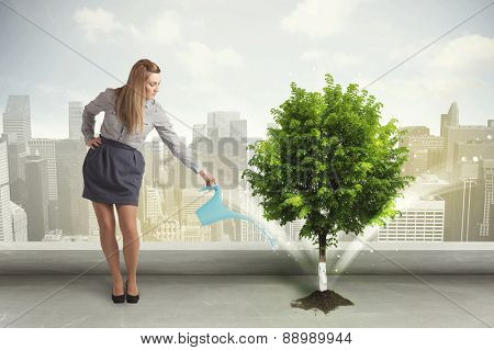 Businesswoman watering green tree on city background concept