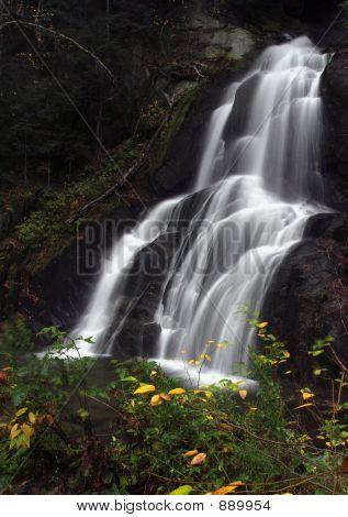 Moss Glen Falls Flowing