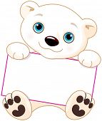 foto of polar bears  - Cute Polar bear holds a sign - JPG