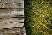 foto of grass  - Wood background - JPG