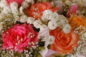 picture of rose close up  - Bouquet of beautiful multicolored roses - JPG