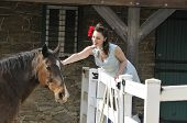 picture of horse girl  - retro pin up girl leaning over a fance in a barn and petting a horse - JPG