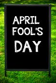 picture of fool  - APRIL FOOL - JPG