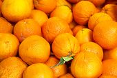 picture of stall  - pile of organic oranges at market stall - JPG