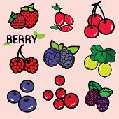 picture of nutrients  - Various kinds of colourful fresh berry - JPG