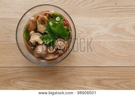 pickled milk mushrooms