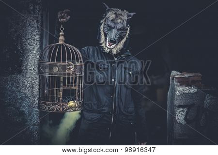 Scary, man with mask wolf and lamp with colored smoke