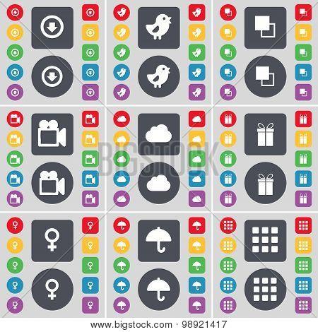 Arrow Down, Bird, Copy, Film Camera, Cloud, Gift, Venus Symbol, Umbrella, Apps Icon Symbol. A Large