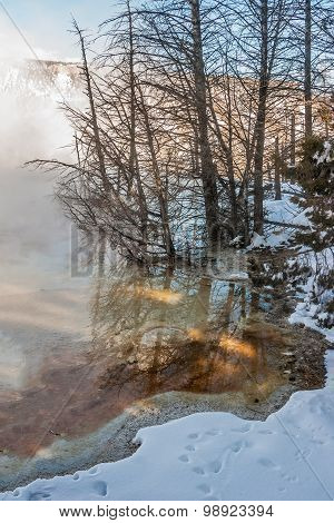 Hot And Cold In Yellowstone