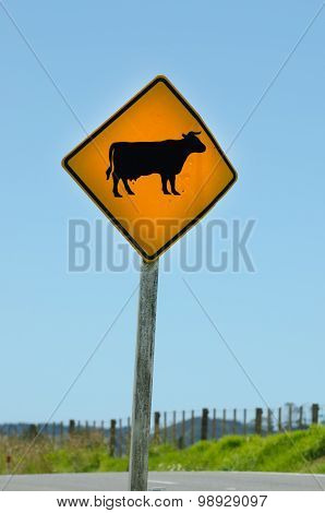 A warning sign alerts motorists to free ranging cattle crossing the road in New Zealand. vertical
