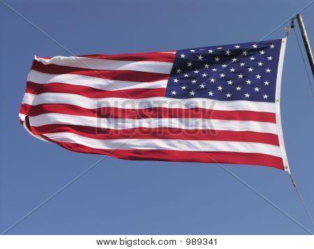 Nós bandeira 2