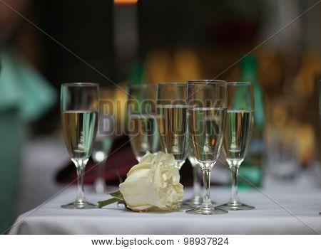 White Rose and glasses of wine