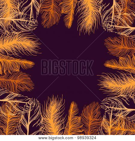 Set frame of colourful feathers. background