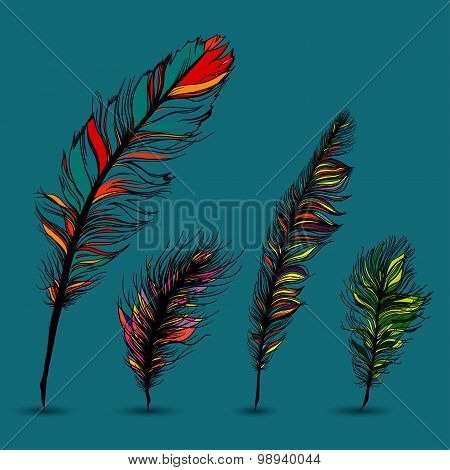 Set of multicolored feathers. With blue background